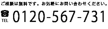0120-567-731